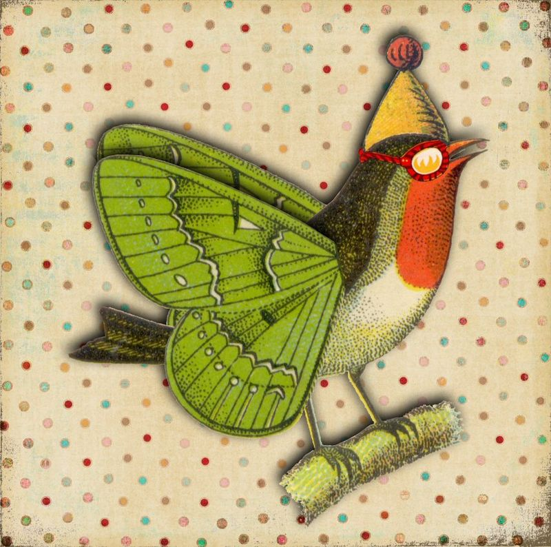 Butterfly bird collage FL 50