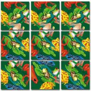 Scrambles_squares_frogs