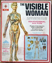 Visible_woman